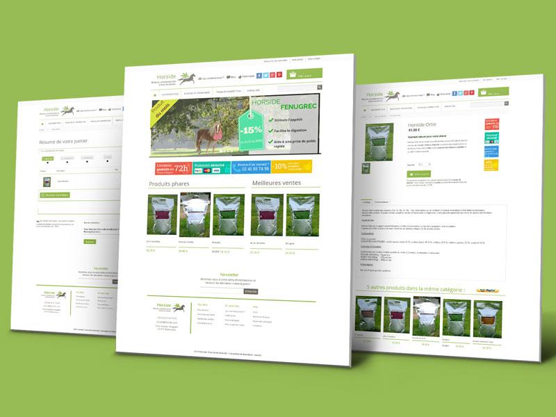 Page produit, accueil et commande